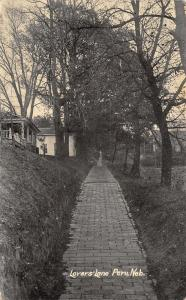 Peru Nebraska~Lovers' Lane~Cobblestone Brick Sidewalk~Homes~1916 B&W Postcard
