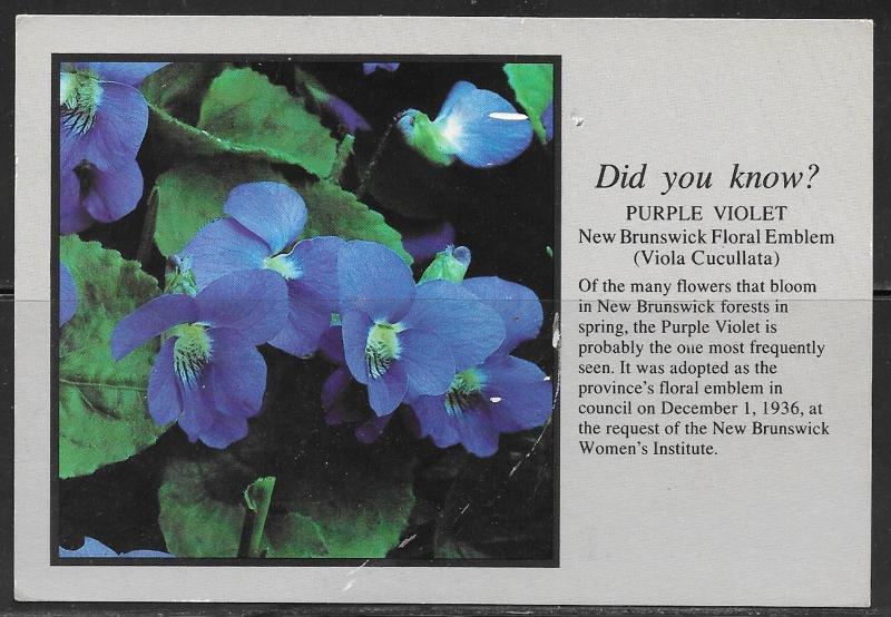 Canada, New Brunswick Floral Emblem, Blue Violet, mailed in 1993