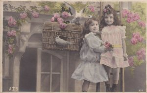 RP: Two girls with Doves & cage, Pink Roses Bushes, PU-1905