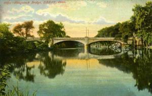 CT - Derby. Naugatuck Bridge