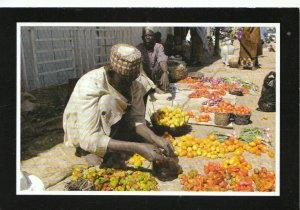 Nigeria Postcard - Ali Buda Selling His Tomatoes - Gusau, Zamfara State  TZ5003