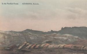ADAMANA, Arizona, 1920-30s; In the Petrified Forest # 3