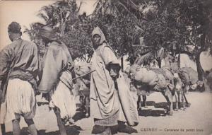 Guinee Caravane de petits anes