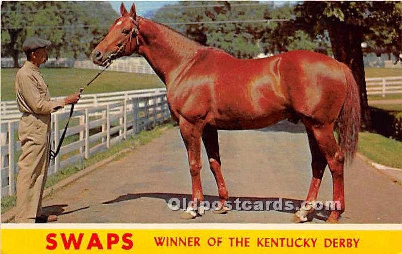 Lexington, Kentucky, KY, USA Horse Racing Postcard Swaps, Winner of the Kent...