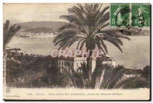 Nice Old Postcard view between the palm trees taken Sainte Helene