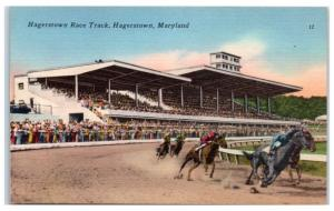 Mid-1900s Horseracing at Hagerstown Race Track, Hagerstown, MD Postcard