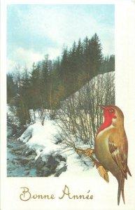 Winter seasonal greetings postcard landscape & bird New Year