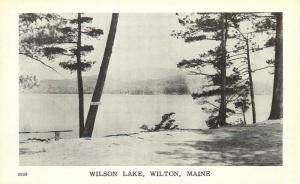 Wilton, Maine, ME, Wilson Lake, Unused Vintage Postcard d7733