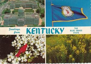 Kentucky Frankfort Greetings From Kentucky The Blue Grass State
