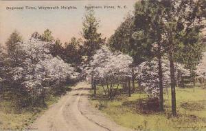 Dogwood Time, Weymouth Heights, Southern Pines, North Carolina, 1900-1910s