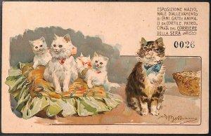Lib516 - CARTOLINA d'Epoca Illustrata - EXPO Cani Gatti MILANO 1900 - BELTRAME