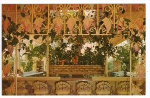 Florida  Clearwater   The Kapok Tree Inn  Grape-Bar