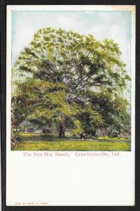 Ben Hur Beech Tree Crawfordsville Indiana Unused c1910s