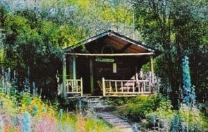 Canada Robert Service's Cabin Dawson City Yukon