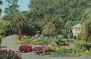 Train Tours at Auckland Zoological Park New Zealand Postcard