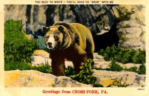 PA - Cross Fork. Greetings