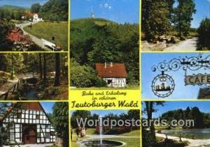 Teutoburger Wald Germany, Deutschland Postcard Ruhe und Erhalung im Schanen T...