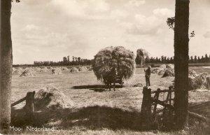 Horsse Cart. Farming. Mooi Nederland  Old vintage Dutch postcard