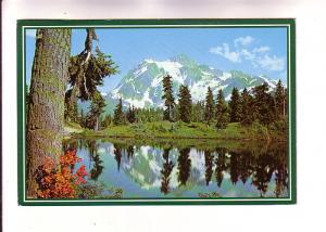 Mount Shuskan, Mount Baker National Forest, Washington, Photo Walt Dyke