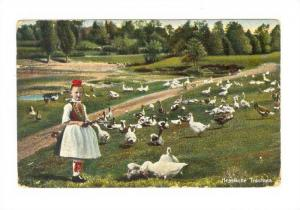 Girl amoung a flock of geese, Hessische Trachten, Hesse, Germany, PU-1906