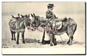 Old Postcard Donkeys Mules