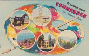 Greetings From Greetings From Tennessee The Volunteer State