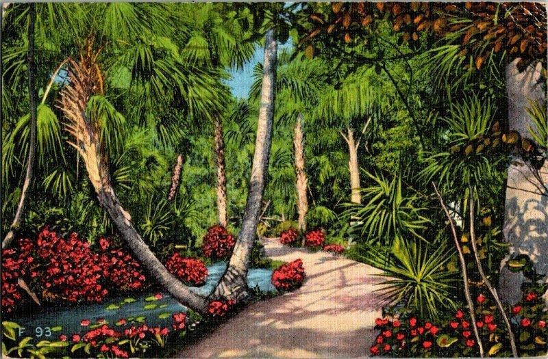 McKee Jungle Garden Vero Beach Vintage Postcard Standard View Card