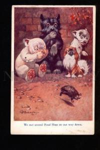 3049699 BONZO Japanese Chin SCOTTISH Terrier STUDDY