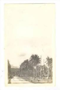 RP New Guinea, WWII, Jeaps on dirt highway