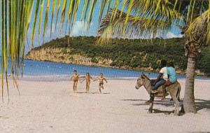 Antigua Beautiful Beach Scene
