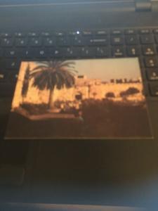 Vintage Postcard: Jerusalem, Jaffa Gate