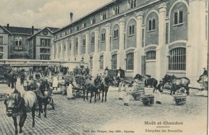 MOET & CHANDON , France, 1900-10s ; Champagne Production #7