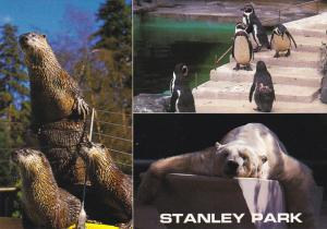 Canada Multi View Stanley Park Zoo Vancouver British Columbia