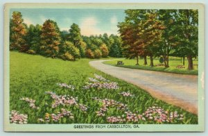 Carrollton Georgia~Driveway in Park~Picnic Benches in Grass~Flowers~1948