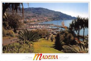 Postcard MADEIRA, Cidade do Funchal #894