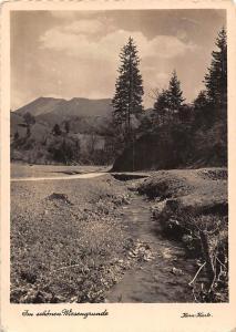 Im schoenen Wiesengrunde Creek Forest Landscape