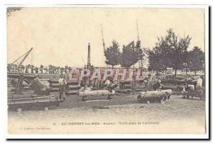 Rochefort sur Mer Old Postcard Arsenal full Earth & # 39artillerie of (very a...