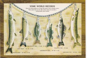 Some world records, The challenge of Canadian Waters,  Canada,  50-70s