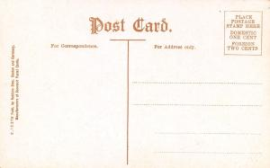 Rochester New York~Highland Park Reservoir~Spray~Curvy Dirt Road~1908 Postcard