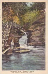 Pennsylvania Laurel Glen Bushkill Falls