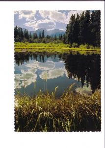 Sprague's Lake, Bear Lake Road, Rocky Mountain National Forest, Colorado, Pho...