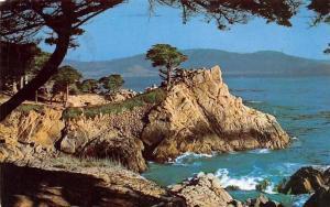 USA Midway Point Carmel Bay Monterey Cypress Trees Landscape
