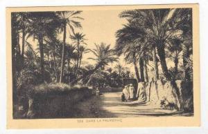 Dans la Palmeraie, Africa, 1910s