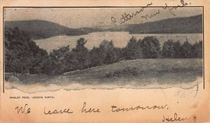 Whaley Pond, Looking North, New York State, Private Mailing Card, Used in 1905