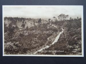 Surrey THE GOLDEN VALLEY Hindhead - Old Postcard by Frith 80456