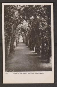 Queen Mary's Bower, Hampton Court Palace Unused