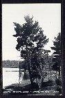 Teal Lake,Hayward,WI