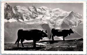 Chamonix Mont Blanc Real Photo RPPC Postcard Cattle Switz. Italy France 1937