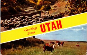 Greetings from Utah UT Postcard used 1959 from Provo