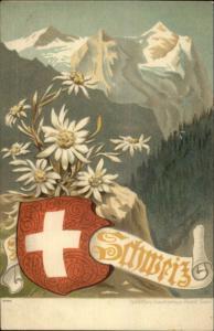 Swiss Red Cross Shield Schweiz Mountains Flowers c1900 Postcard
